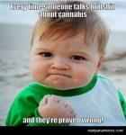when someone talks bullshit about cannabis