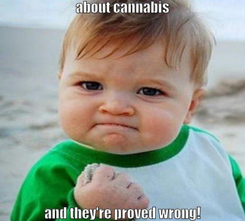 Cannabis BS