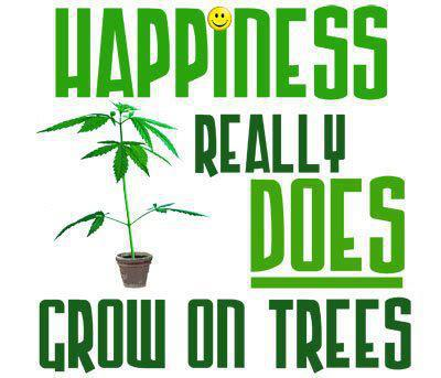 Happiness Really Does Grow On Trees
