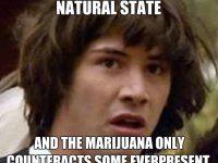 Conspiracy keanu weed Conspiracy