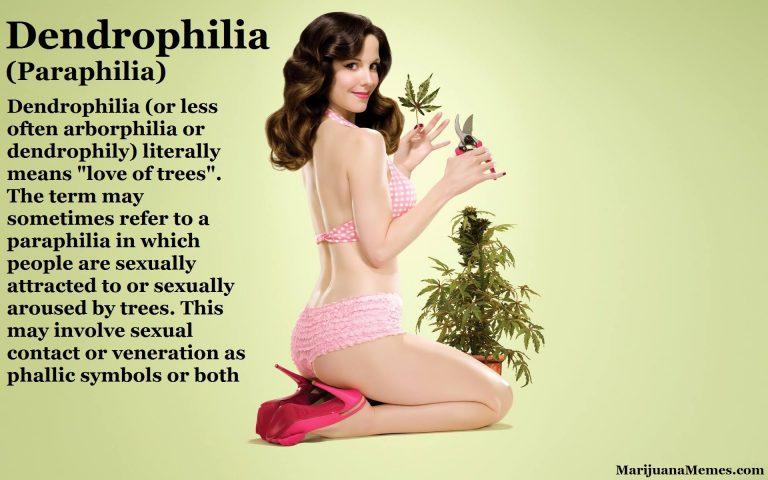 dendrophilia aborphilia dendrophily paraphilia