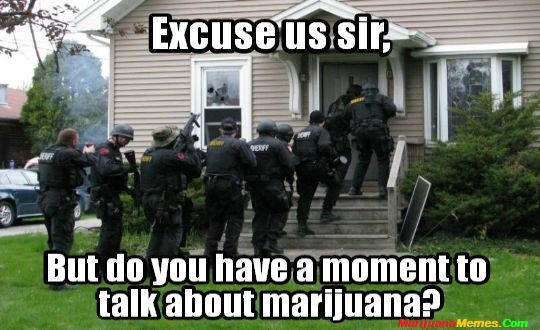 Excuse us sir talk about Marijuana