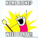 weed party X all the Y meme
