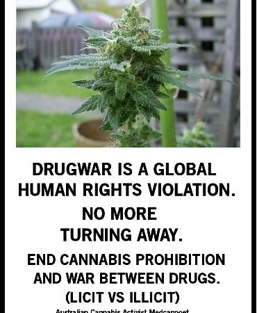 Drug War violates Human Rights.