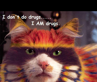 i am drugs salvador dali quote cat