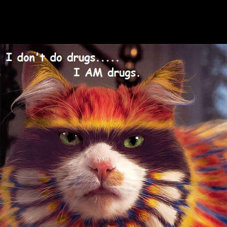 i am drugs salvador dali quote cat