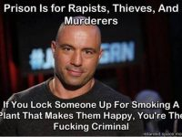 prison for pot quote joe rogan