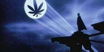 batam weed signal