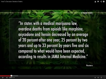 marijuana decreases overdoses