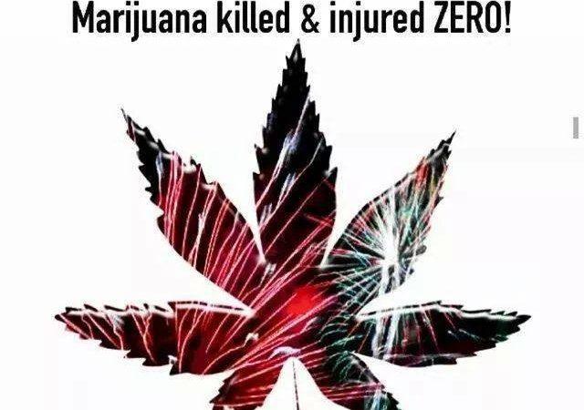 Marijuana – Safer Than Fireworks