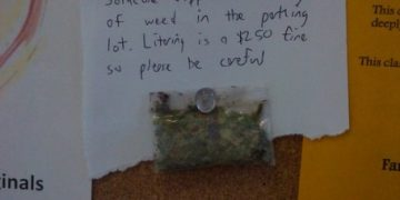 lost and found weed people