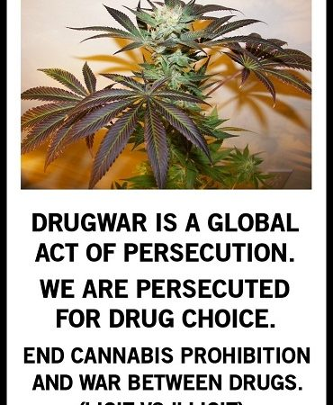 Drug War = Persecution.