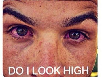 stoners be like do i look high bro