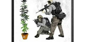 war on nature