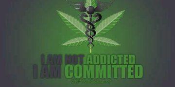 I'm not addicted, I'm commited