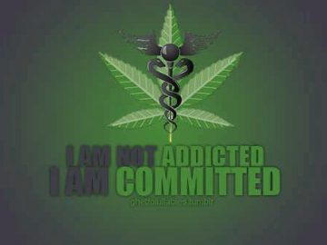 I'm not addicted, I'm commited