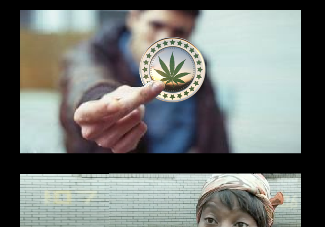 Ain't nobody got time for…Potcoin?