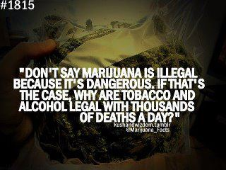 The illegality of marijuana is not related to dangers
