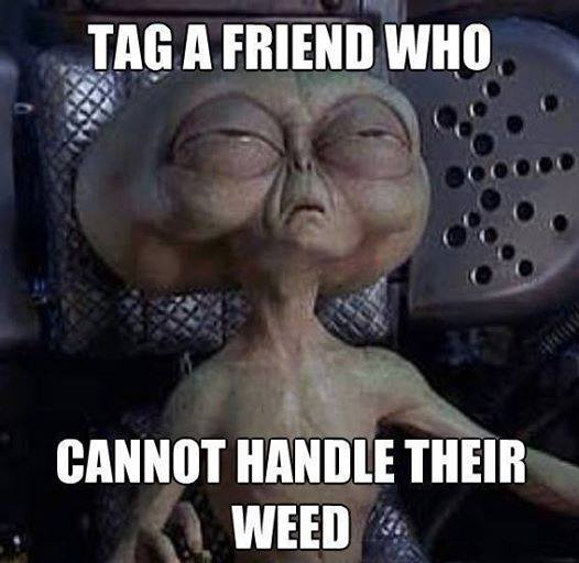 Tag a friend who cannot handle their weed