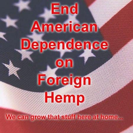 hemp farming america