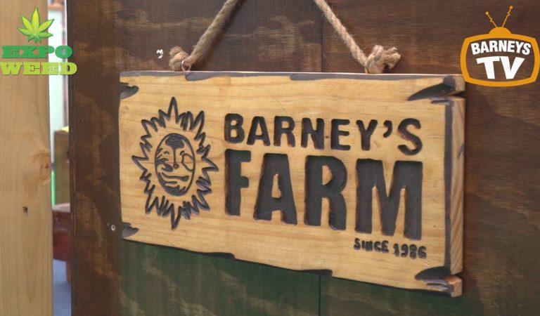 Barney's Farm On Tour