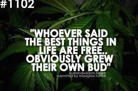 grown your own best things in life are free