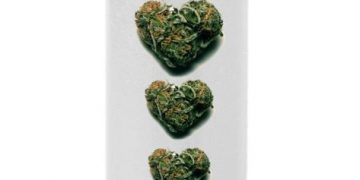 bic lighter heart buds