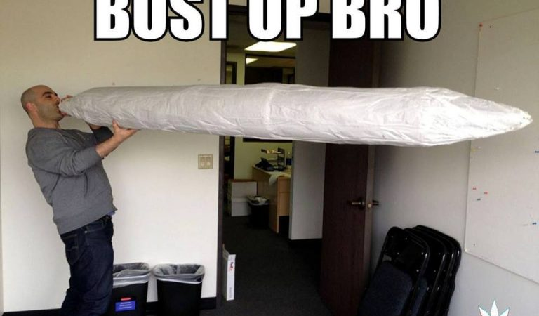 Is this the biggest joint ever ?