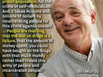 bill murray marijuana quote reddit ask me anything