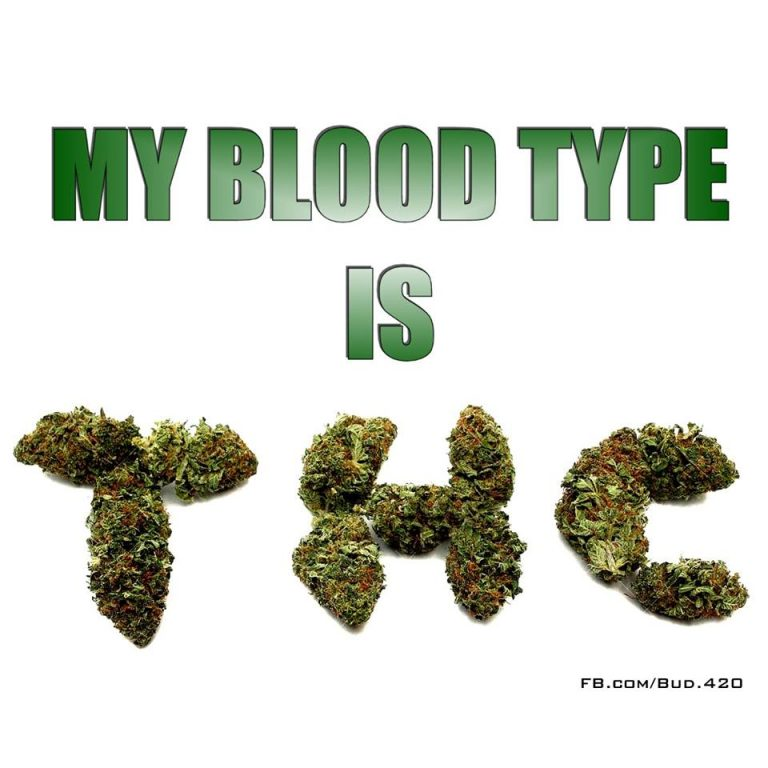 blood type thc