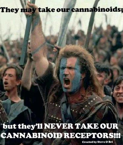 they may take our braveheart cannabinoids meme