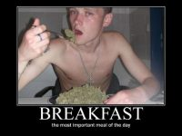 breakfast most important meal