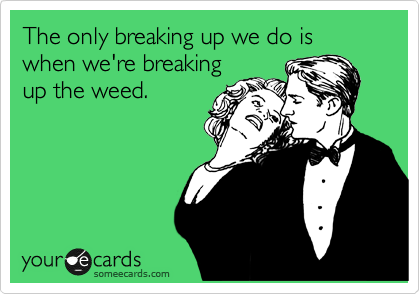 The Only Breaking Up We Do Is When We're Breaking Up The Weed