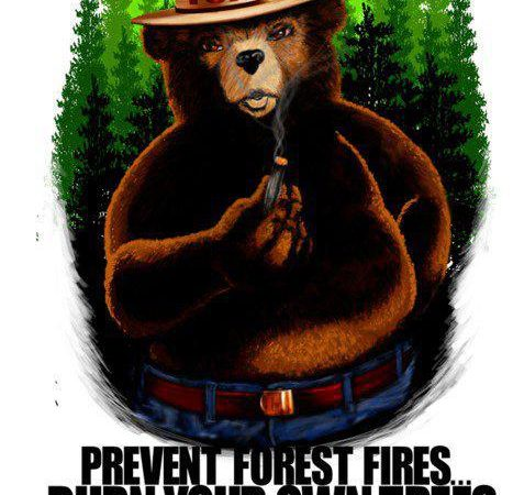 Burn Your Own Trees And Save The Forests