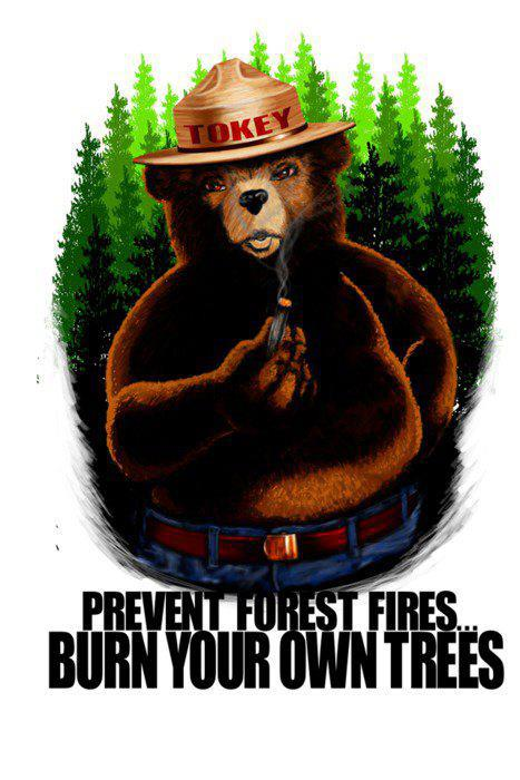 burn trees save forest