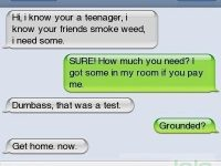 busted selling pot by parents