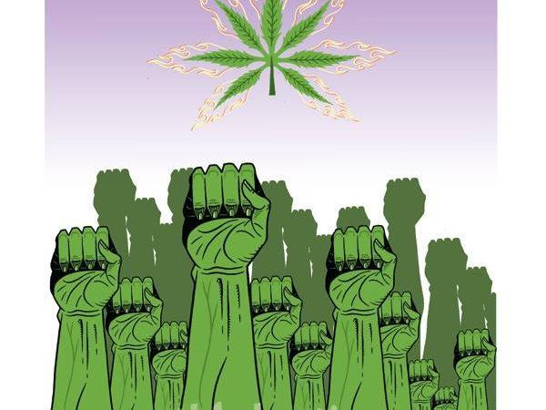The California Cannabis Hemp Initiative 2014 (Jack Herer Initiative)