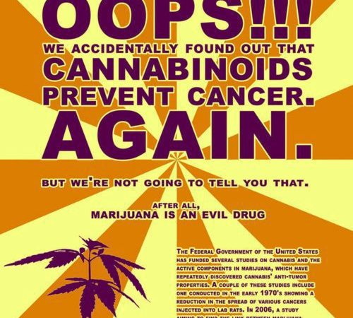 Cannabinoids Prevent Cancer