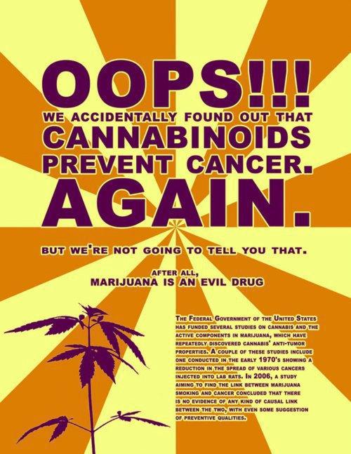 Cannabinoids prevent cancer