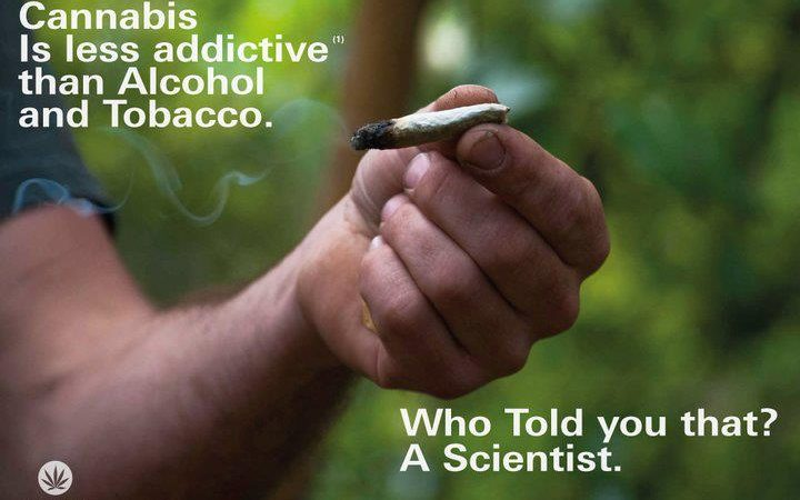 Cannabis Is Less Addictive Than Alcohol