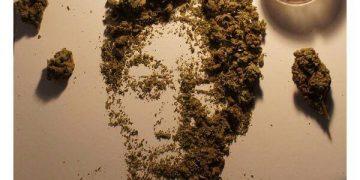 wiz Khalifa cannabis art