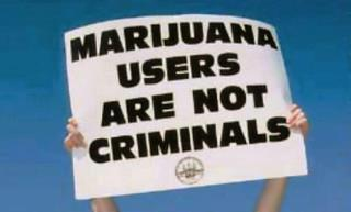 Cannabis Users Are Not Criminals