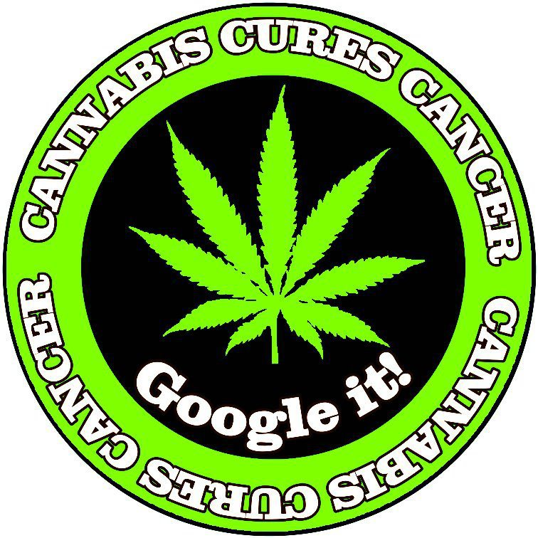 cannabis kills cancer sticker