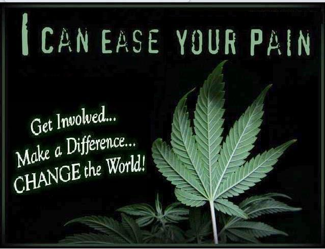 I can ease your pain cannabis marijuana