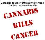 cannabsi kills cancer