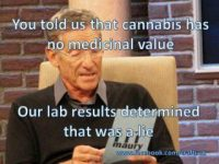 Maury medical marijuana lab test meme