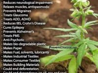 cannabis benefical plant