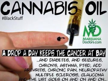 cannabis oil a drop a day