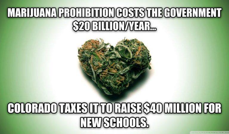 Marijuana Prohibition vs Legalization Costs