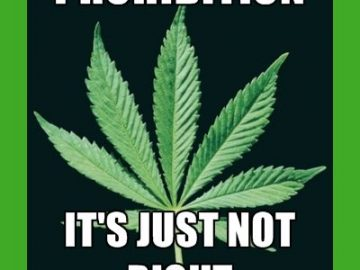 Cannabis prohibition, it's just not right!